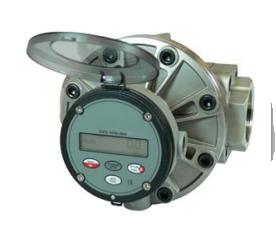 Multipulse Oval Gear
